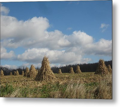 Tied  Up For The Winter Metal Print by Jeffrey Koss