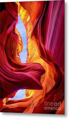 Endless Beauty Metal Print by Mikes Nature