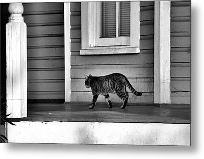 Across The Porch Metal Print by Jan Amiss Photography
