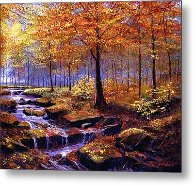 Autumn In Goldstream Park Metal Print by David Lloyd Glover