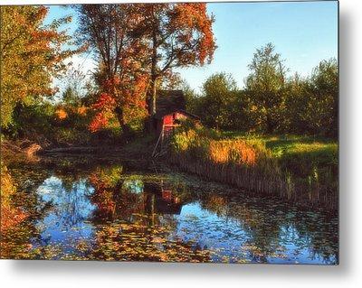 Autumn Palette Metal Print by Joann Vitali