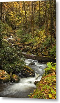 Autumn Stream Metal Print by Andrew Soundarajan
