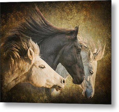 Brings The Thunder Metal Print by Ron McGinnis