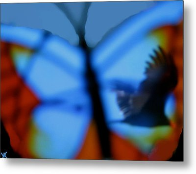 Butterfly Birds Collection  Metal Print by Debra     Vatalaro