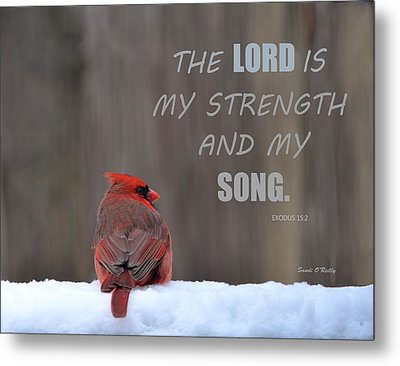 Cardinal In The Snowstorm With Scripture Metal Print by Sandi OReilly