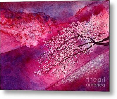 Cherry Blossoms Metal Print by Hailey E Herrera