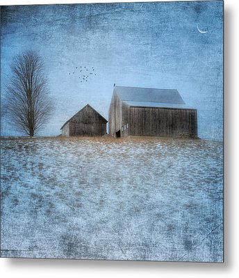 Coming Home To Roost Metal Print by Bill Wakeley