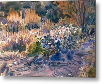 Desert Flora Metal Print by Donald Maier