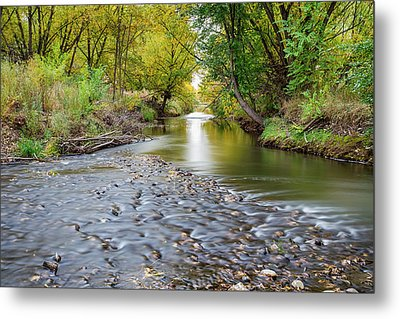 Down Stream Metal Print by James BO Insogna