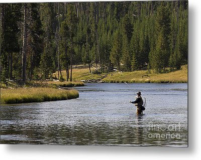 Fly Fishing In The Firehole River Yellowstone Metal Print by Dustin K Ryan
