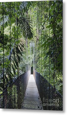 Footbridge In Costa Rican Forest Metal Print by Jeremy Woodhouse
