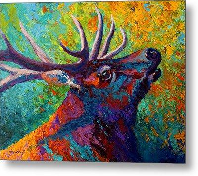 Forest Echo - Bull Elk Metal Print by Marion Rose