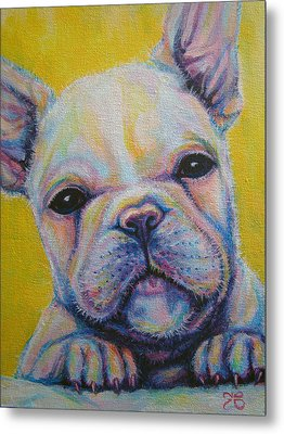 French Bulldog Metal Print by Jack No War
