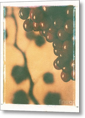 Grapes Metal Print by Jim Wright