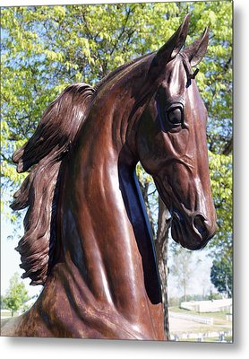 Horse Head In Bronze Metal Print by Roger Potts
