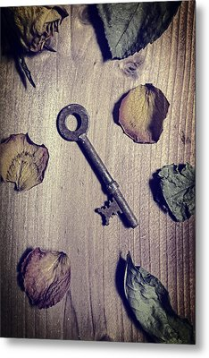 key Metal Print by Joana Kruse