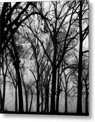 Leta Metal Print by Ken Walker