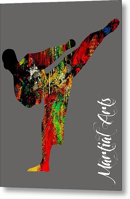 Martial Arts Collection Metal Print by Marvin Blaine