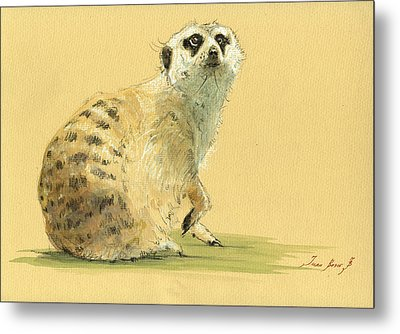 Meerkat Or Suricate Painting Metal Print by Juan  Bosco