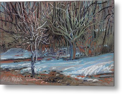 Melting Snow Metal Print by Donald Maier