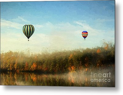 Morning Flight Metal Print by Darren Fisher