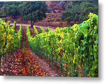 Nearly Harvest Metal Print by Patricia Stalter
