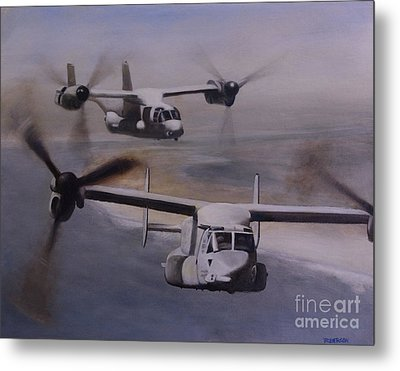 Ospreys Over The New River Inlet Metal Print by Stephen Roberson