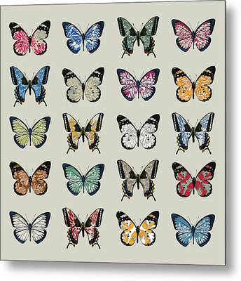 Papillon Metal Print by Sarah Hough