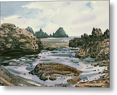 Point Lobos Metal Print by Donald Maier