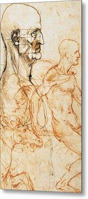 Proportions Of The Face  Metal Print by Leonardo Da Vinci