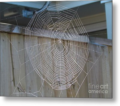 Spider's Web Metal Print by Joyce Woodhouse