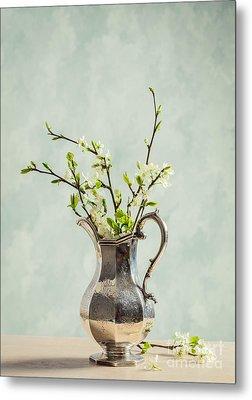 Spring Blossom Metal Print by Amanda Elwell