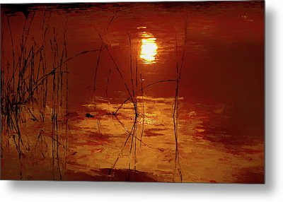 Sunset On The Bay Metal Print by Andrea Kollo