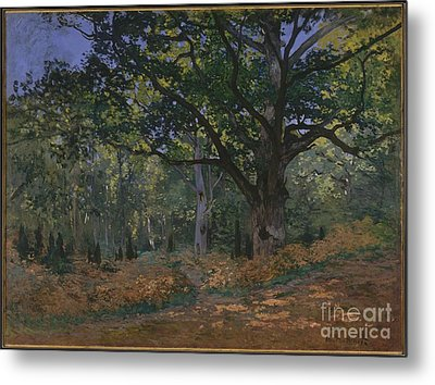 The Bodmer Oak, Fontainebleau Forest Metal Print by Celestial Images