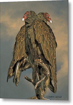 Turkey Vulture Pair Metal Print by Larry Linton