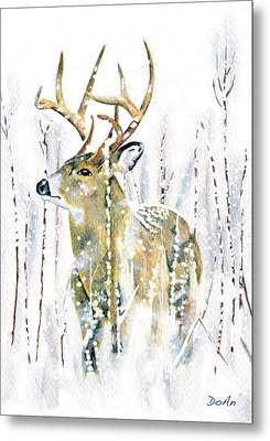 Winter Deer Metal Print by Antony Galbraith