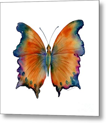1 Wizard Butterfly Metal Print by Amy Kirkpatrick