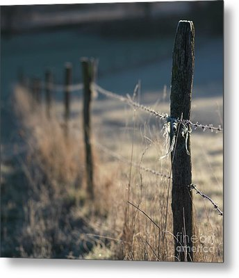 Wooden Posts Metal Print by Bernard Jaubert