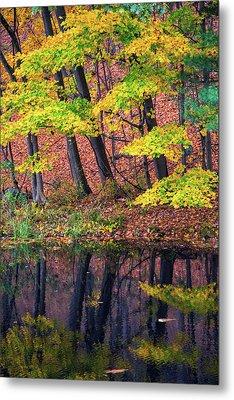 Yellow Autumn Metal Print by Karol Livote