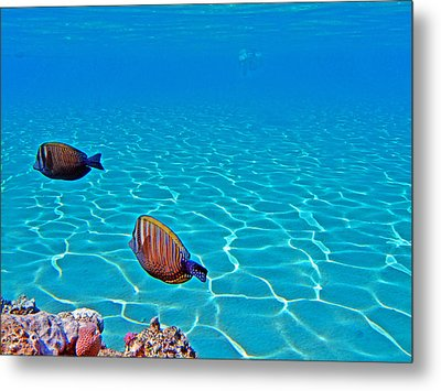 Underwater World. Metal Print by Andy Za