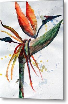 Bird Of Paradise Metal Print by Mindy Newman
