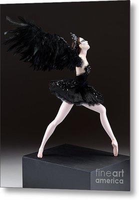 Black Swan  Metal Print by Vickie Arentz