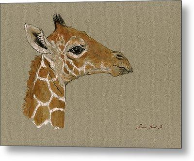 Giraffe Head Study  Metal Print by Juan  Bosco