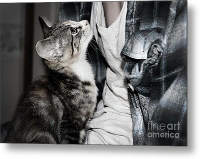 Photography Metal Print by Jayde Rowley