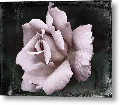Purple Rose Metal Print by Cathie Tyler