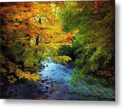 River View Metal Print by Jessica Jenney