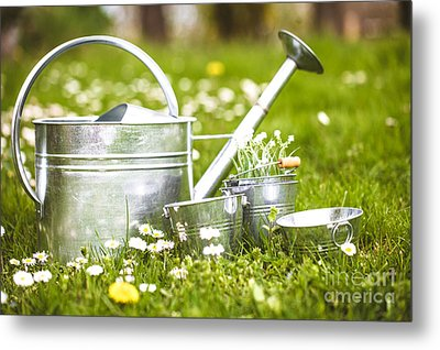 Spring Garden Metal Print by Mythja Photography