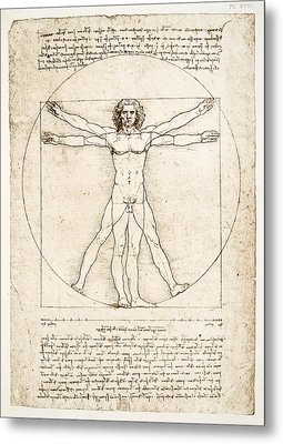 The Proportions Of The Human Figure Metal Print by Leonardo Da Vinci
