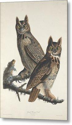 Great Horned Owl Metal Print by John James Audubon
