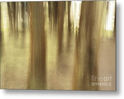 Nature Abstract Metal Print by Gaspar Avila